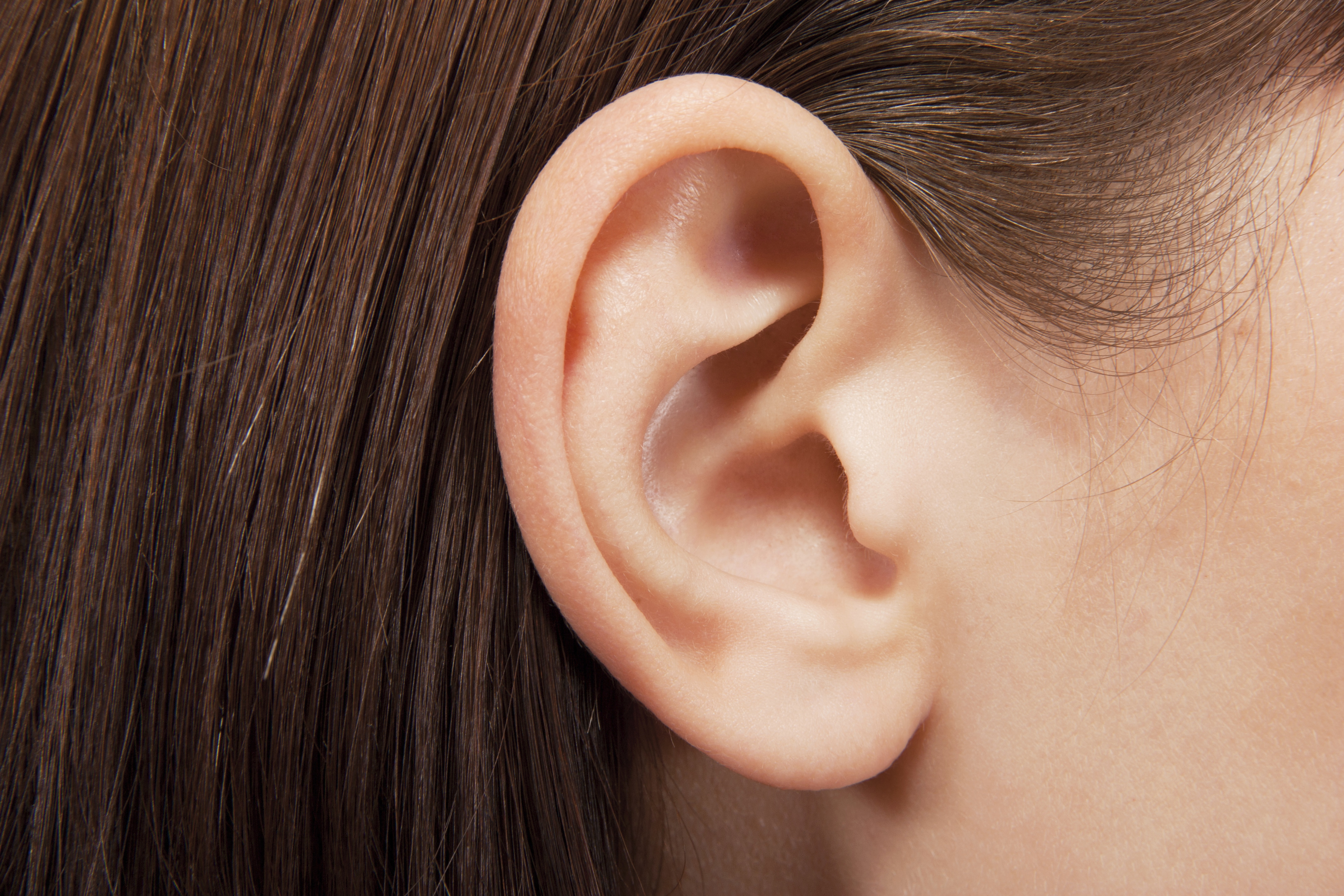 Ear of a Woman with dark hair